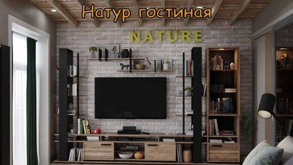3 натур гостиная_00001